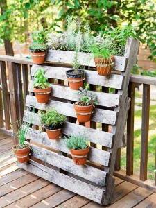 Atelier jardinage : Jardiner chic et pas cher