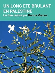 Un long été brûlant en Palestine
